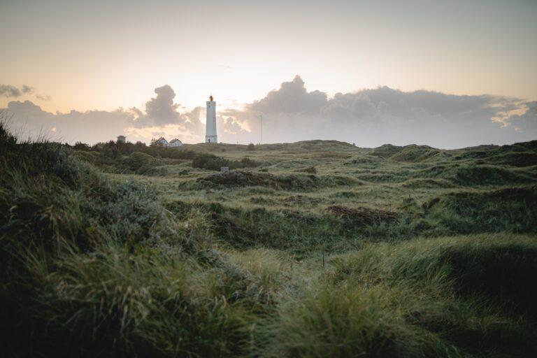 smuk morgen i Vestjylland